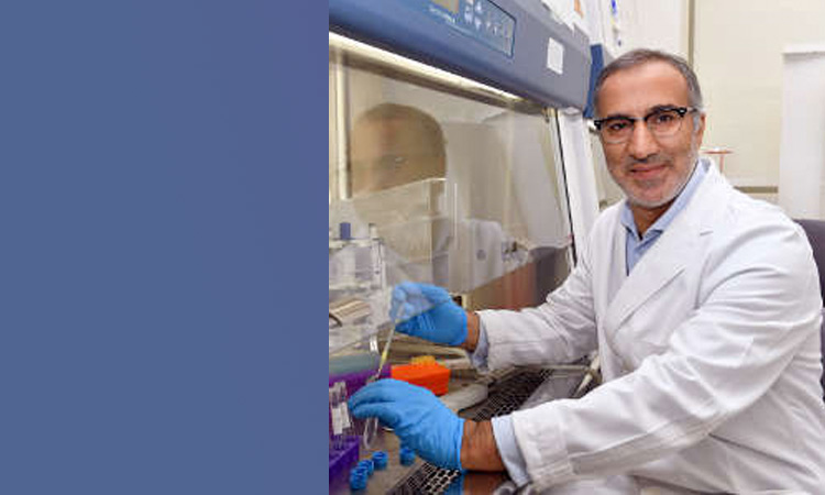 Bringing competitive biomedical research to emerging and developing economies